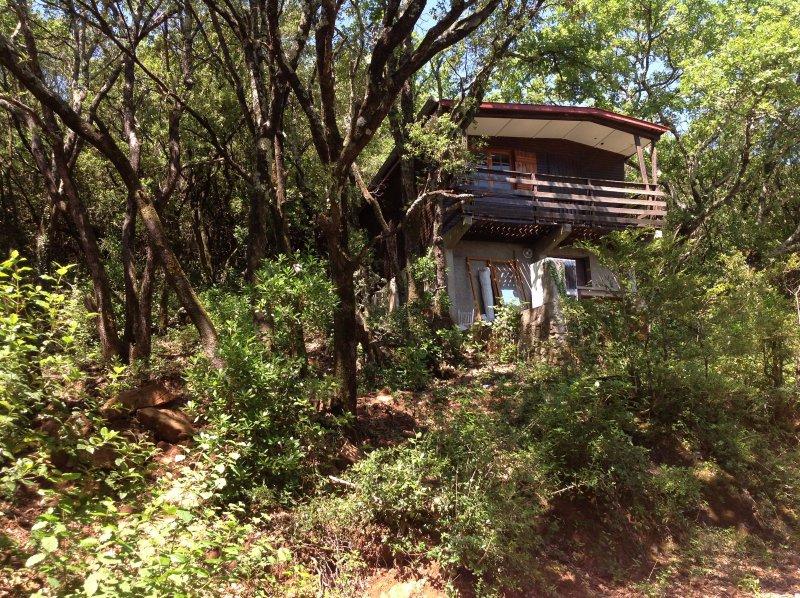 Vente maison 3 pieces de 40 m2 30140 thoiras 964 chalet for Maison en pleine nature